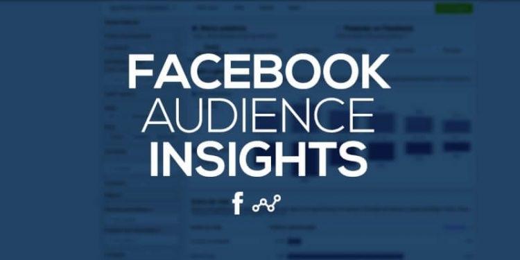 audience insight là gì