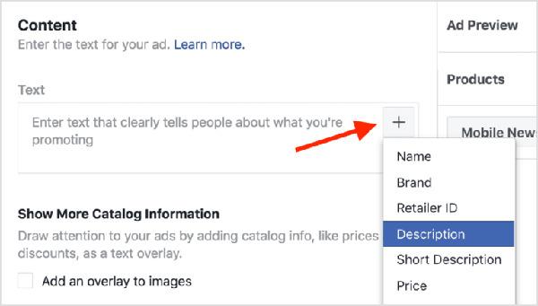 thông tin cho dynamic ads