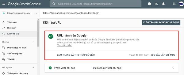 Kiểm tra Url trên Google